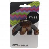 Piranha Tartaruga Media 0957